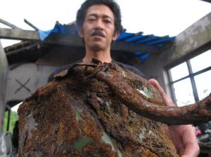 Sriyanto menunjukan ceret air yang hancur akibat erupsi merapi, kini kondisinya memperihatinkan lantaran mengalami korosi parah dan terancam lenyap